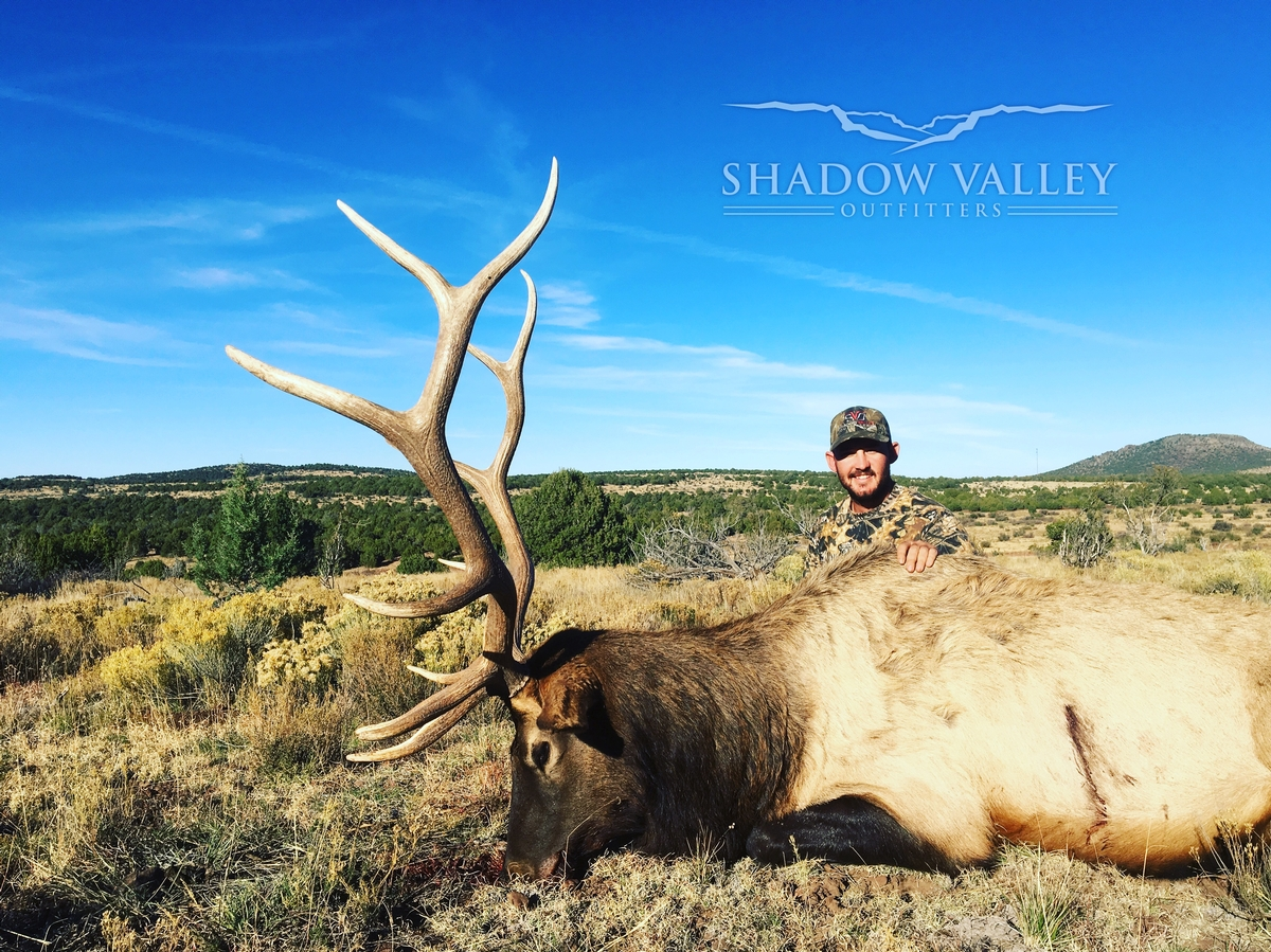 Trophy Arizona Elk Hunts