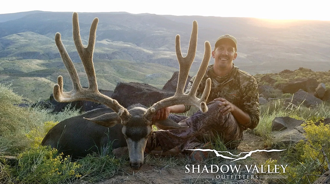 OTC Mule Deer Hunts Arizona