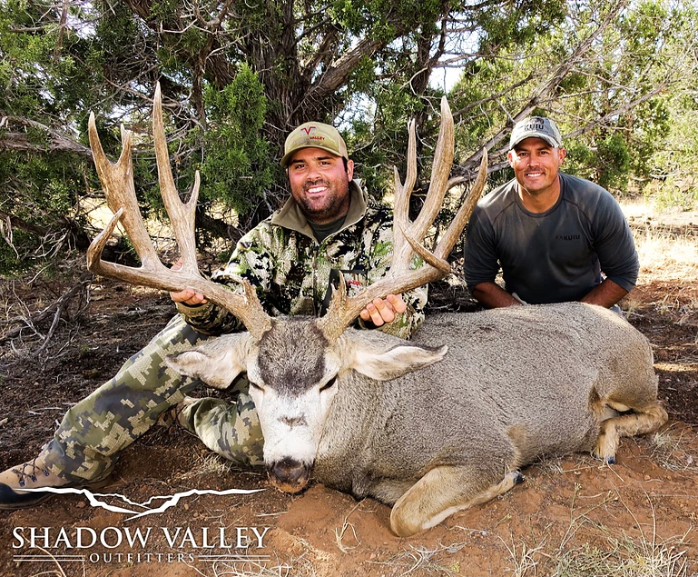 Outfitted Mule Deer Hunts